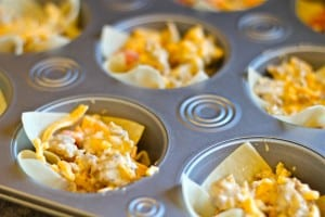 Pre-Oven Sausage Won Ton Cups