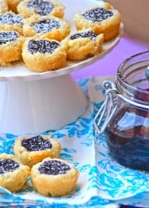 Mini Blueberry Coconut Tarts with Blueberry Curd