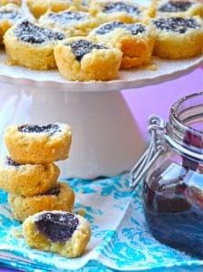 Mini Blueberry Coconut Tarts with Blueberry Curd Filling