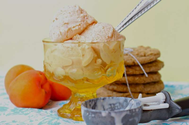 Summer's Bounty- Apricot Ice Cream!
