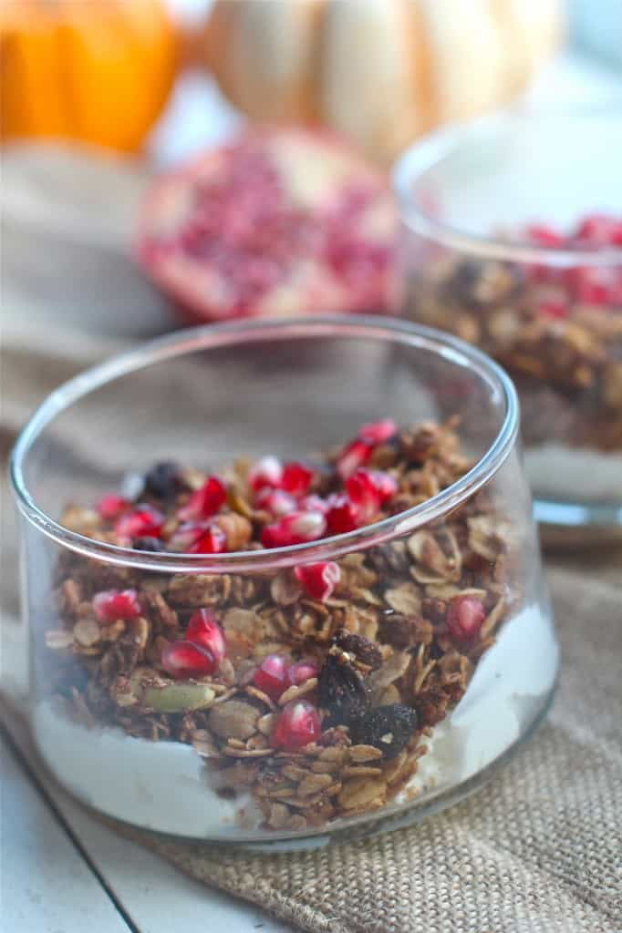 Pumpkin Spice Granola with Dried Cranberries and Pecans