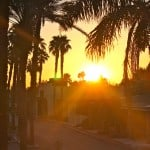 Imperial Valley Farm Tour and a Giveaway!