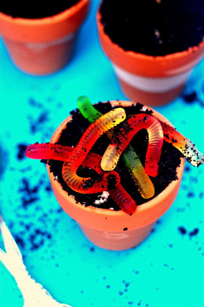 Ice Cream Flower Pots With Worms