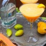 Mango Papaya Margaritas