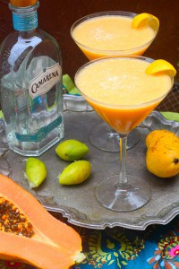 Mango Papaya Margaritas