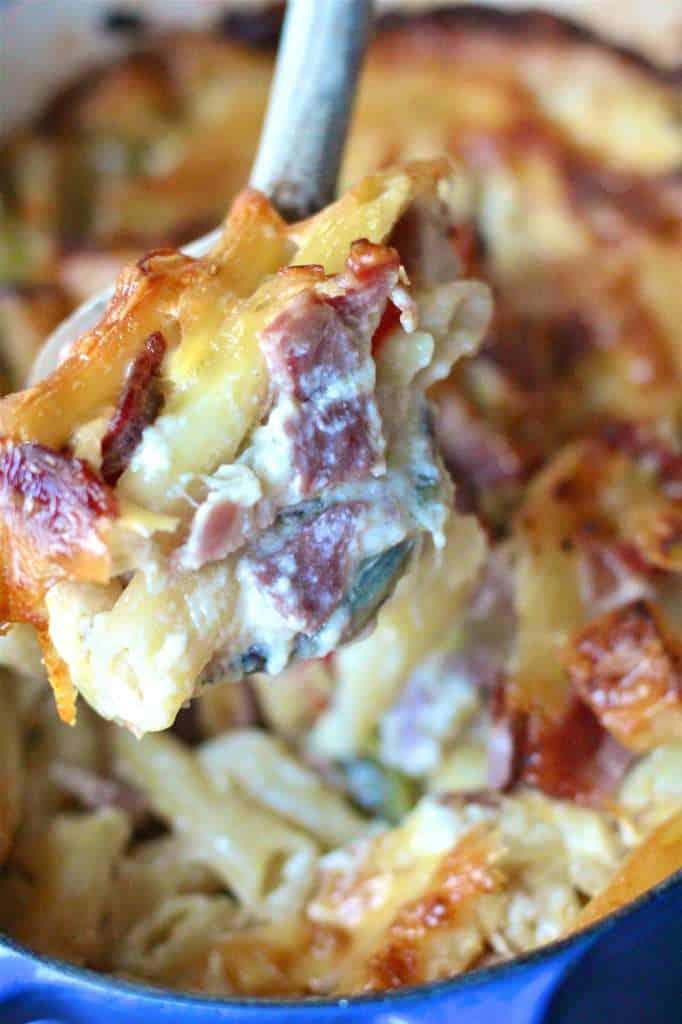 Creamy Pasta Casserole