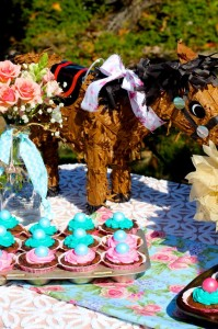 Vintage Cow Girl Party