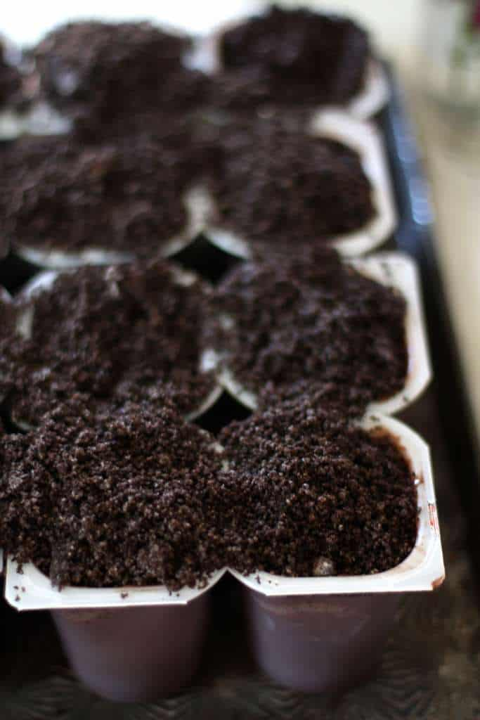 dirt pudding cups