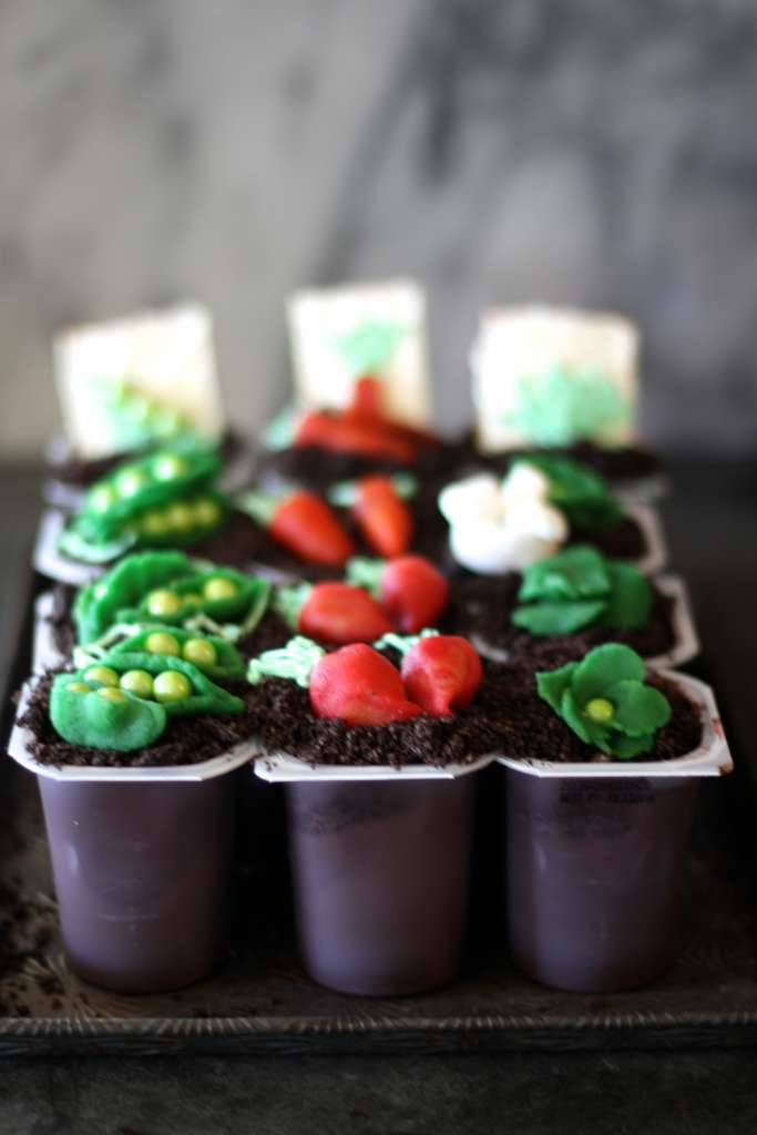 Pudding cups vegetable garden