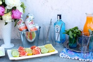 How to build a Gin + Tonic Bar