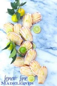 Lemon Lime Madeleines