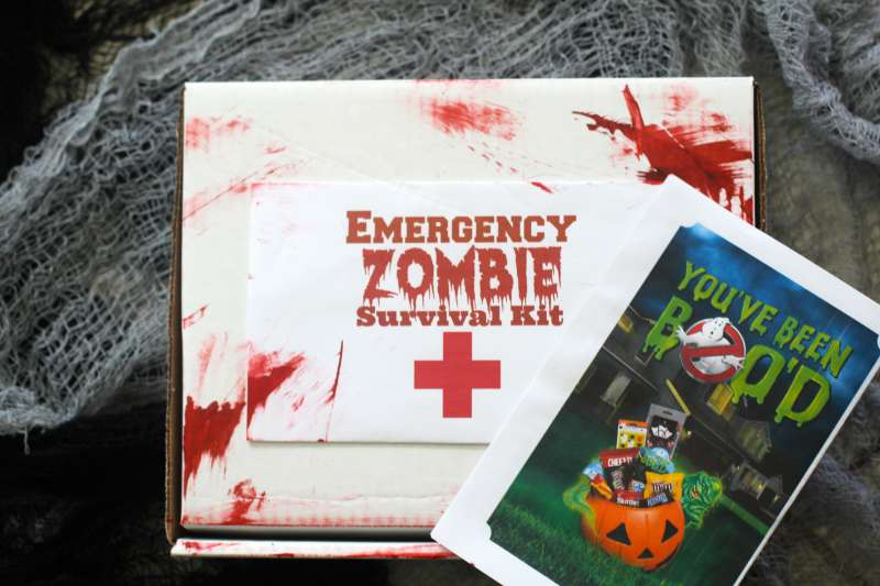 in case you dont know what booing means it is when you make a little halloween treat secretly deliver it with a card that explains how it works - Zombie Party Supplies