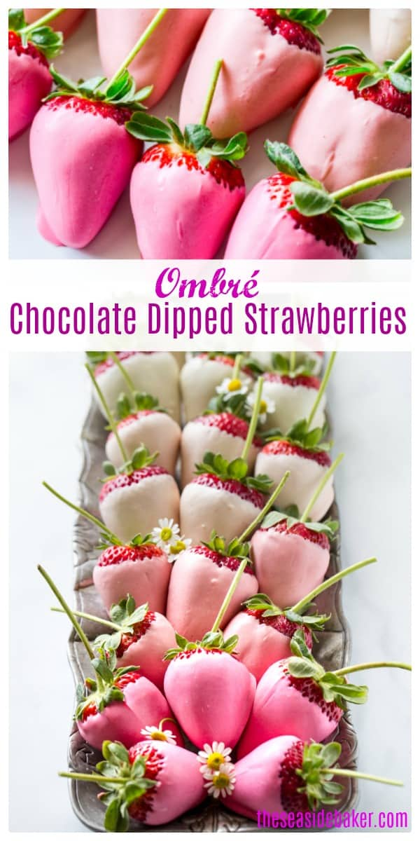 Ombre White Chocolate Covered Strawberries are elegant, delicious and surprisingly easy to make. The white chocolate creates a lovely pink ombre effect that puts a unique and modern twist on a classic Valentine's Day dessert.  A truly show-stopping presentation - perfect for entertaining or as a special homemade gift. | #TheSeasideBaker  #valentinesday #chocolatecoveredstrawberries #chocolate