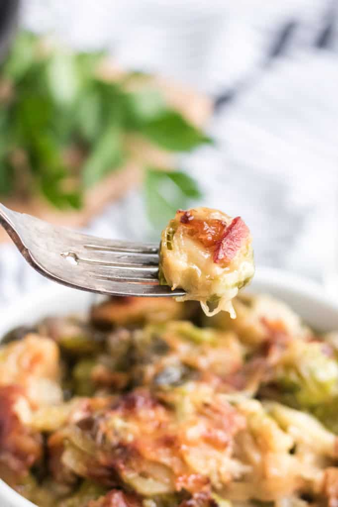 brussels sprouts au gratin in a bowl with fork