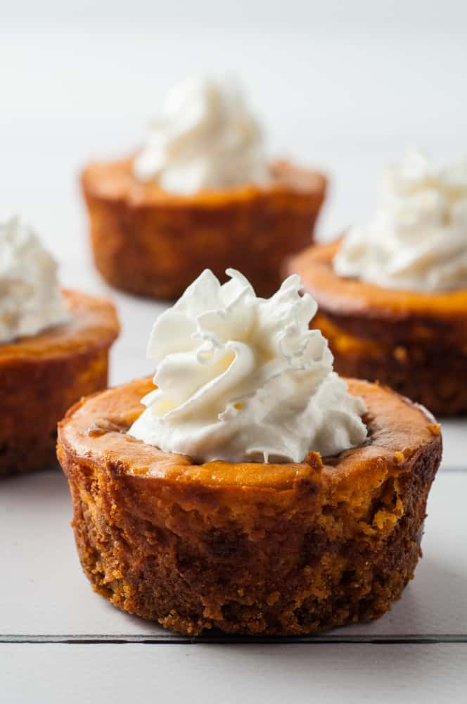 mini pumpkin cheesecakes with whipped cream on top