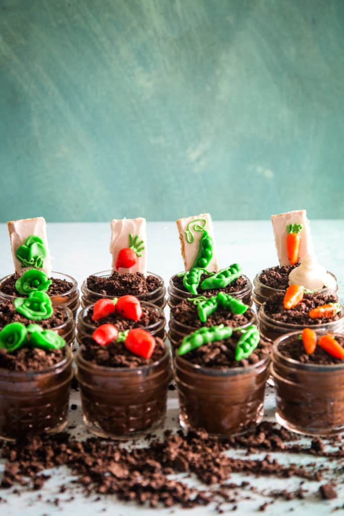 4 rows of garden pudding cups with green background