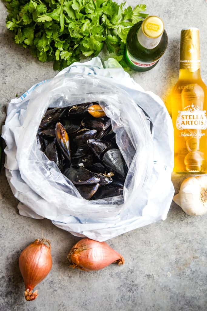 bag of raw mussels, cilantro, beer, and shallots on metal background